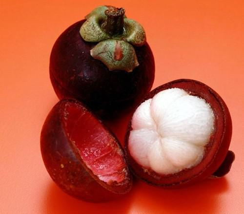 Semillas de mangostán, rica en nutrientes Reina de frutas tropicales, semillas de frutas, 10 semillas