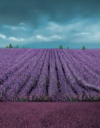 Lavender Wedding Backdrops Online Shopping | Lavender Wedding ...