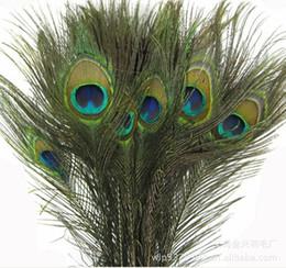 Venta al por mayor de 25 -30 CM Accesorios decorativos elegantes genuinos naturales de la pluma del pavo real para la decoración del partido 200pcs / lot que envía libremente