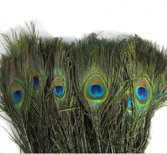 25-30 CM Genuine Natural Pavão Pena Elegante Acessórios Decorativos Para Decoração Do Partido 200 pçs / lote Frete Grátis