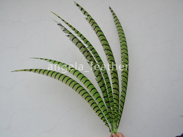 High Quality 50pcs/lot Lime Green 30-35inch/80-90cm Natural Dyed Lady Amherst Pheasant Tail Feather Hair decoration