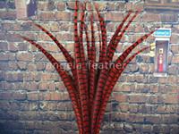 penas do faisão vermelho venda por atacado-Hot Direto Da Fábrica 50 pcs muito Natural 32-36 polegada / 80-90 cm Red Faisão Pena Plume Festival suprimentos Decoração Do Cabelo