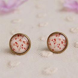 Wholesale Girl Cherries - Vintage Cherry Stud Earrings for Girls Bronzed Earrings rd04