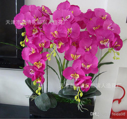Wholesale Orchids Artificial Flower - Wholesale - (6pcs lot) Natural Phalaenopsis Silk Flower Artificial Moth Fake Orchids Wedding Party Home Decoration 6 Colors Available