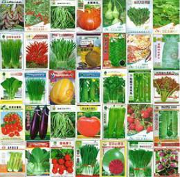 600 sementes por atacado e varejo 30 tipos de diferentes sementes de hortaliças família vaso de jardim varanda quatro estações de plantio em Promoção