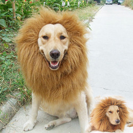 Wholesale Dogs Dress Up Costume - S5Q Pet Costume Lion Mane Wig For Dog Halloween Clothes Festival Fancy Dress up AAACNJ