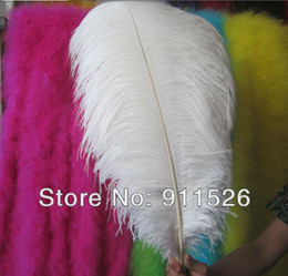 Wholesale Ostrich Feathers 24 Inches - 60-65cm 24-26 Inch WHITE Natural OSTRICH FEATHER Real Ostrich Plumage For Wedding Party Decoration Free Shipping