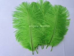 Wholesale Lime Green Feathers - wholesale--100pcs a lot 10-12inch Lime Green Ostrich Feather Plume AAA quality for Wedding Centerpieces table decoration