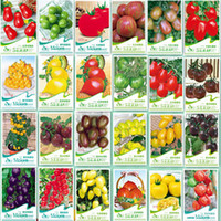 Wholesale Promotion Tomato Seeds Vegetables And Fruits Seed Four Seasons Different Kinds Of Type Purple Cherry Tomatoes Seeds