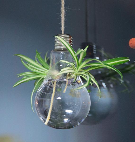 Пакет из 4 лампочки форма растения террариумы висит стеклянная ваза воздух растения плантаторы крытый украшения для нового дома украшения