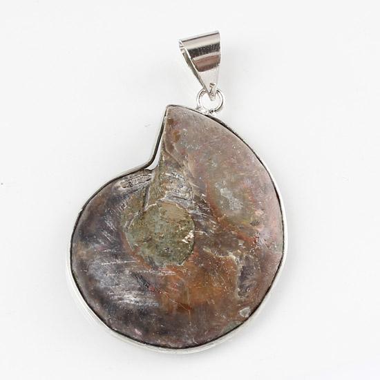 Partihandel 10st CHARM Silverpläterad Broder Naturlig Ammonit Fossil Sten Hängsmycke Pärlor Hängsmycke Smycken För Halsband