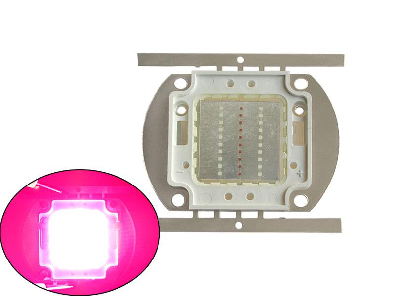 شحن مجاني 30 واط عالية الطاقة أدى ضوء أحمر + أزرق 30-36 فولت 1a ل أضواء النبات diy