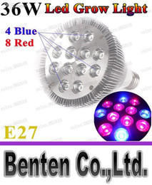 Wholesale Led Ufo Grow E27 - LLFA5205 Free 36W E27 LED par38 Grow lighting 8red 4blue Greenhouse Hydroponic Flower Plant Non-Dimmable Led Bulb Lamp Indoor Growth Light