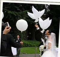 Wholesale Dove Balloons - Wedding Decoration White Dove Balloon White Wedding Balloons Eco-Friendly Biodegradable Helium Balloons Party Favors 10pcs lot
