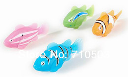 Wasserspielzeug online-freier Verschiffen Roman Robo elektrischer Spielzeug-Haustier-roher Fisch mit Wassergeschenk