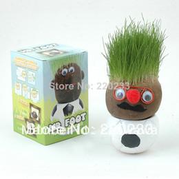 Wholesale Mini Grass Head - African grass doll,doll plant, grass head, grass toy mini plant