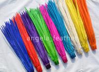 sülün tüyleri ücretsiz gönderim toptan satış-Toptan Satış - Ücretsiz nakliye 100pcs / renk 20-22inch (50-55cm) karışık Renkli Boğmaklı Sülün Kuyruk Tüyleri