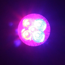 Wholesale Led Plant Grow Light Spotlight - Led Plant Lighting E27 10W Plant Led Grow Light Lamp Bulb 3 Red 2 Blue For Flowering Plant and Hydroponics System 85-265V