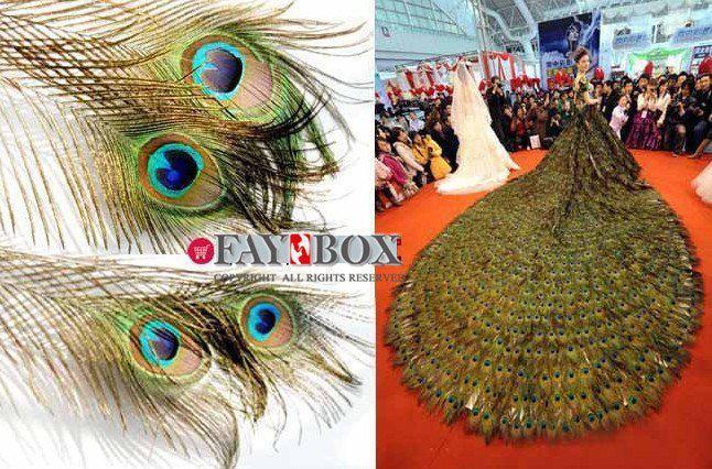 25-30 CM Hakiki Doğal Tavuskuşu Tüyü Parti Dekorasyon Için Zarif Dekoratif Aksesuarları 200 adet / grup Ücretsiz Kargo