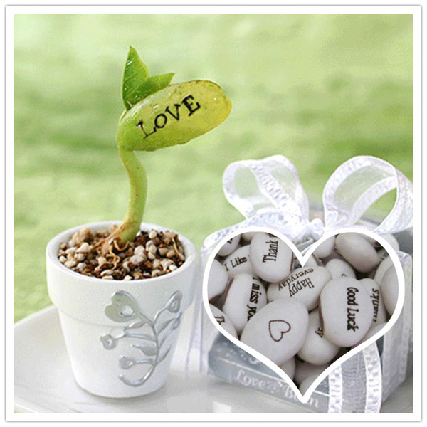 Compre Envío Gratis La Magia Blanca Semillas De Las Habas Crecientes