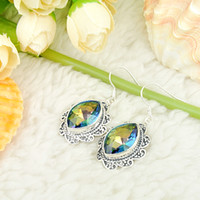 Wholesale Coloured Crystal Chandeliers - Whosale --LUCKY Princess Top Quality and style blue colour Amethyst 925 Silver Earrings