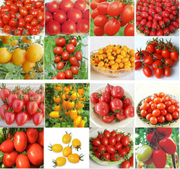 Wholesale Promotions Items - Professional Cherry Tomato Seeds Lycopersicon Esculentum Seeds Vegetable Fruit Seeds Garden Supplies Promotion Partio Items 200pcs lot