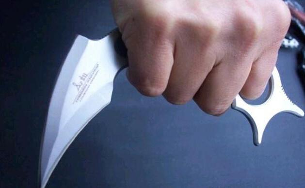 United IRON CLAW Outdoor Stahl Titan Überlebens-Messer Tactical Survival Folding Knife Dienstprogramm Jagdmesser Messer H