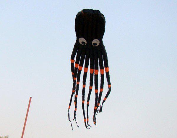 best selling 8m single Line Stunt Biack Parafoil Octopus POWER Sport Kite outdoor toys +