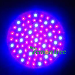 Wholesale E27 W - E27 RED and BLUE 80 LED 4.5 W Hydroponic Plant Grow Growth LED Light Bulb 85-265V