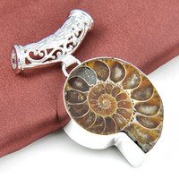 Wholesale Natural Fossil - Unique Unisex Accessories Awesome Natural Stone Ammonite fossils 925 Silver Plated floating charm locket Pendant Nacklaces P1137