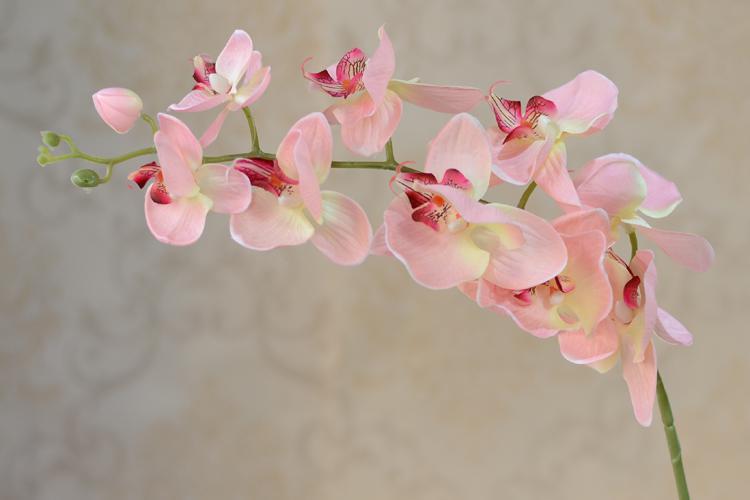 도매 /  인공 가짜 Phalaenopsis 나비 난초 꽃 Cymbidium은 결혼식 장식을위한 실크 꽃을 공급합니다.