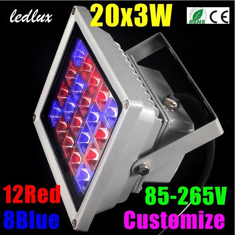 60W 20x3w LED Hydroponics Coltiva la lampada della luce la pianta del fiore, luce di inondazione del LED, luce esterna principale, erbe, verdura