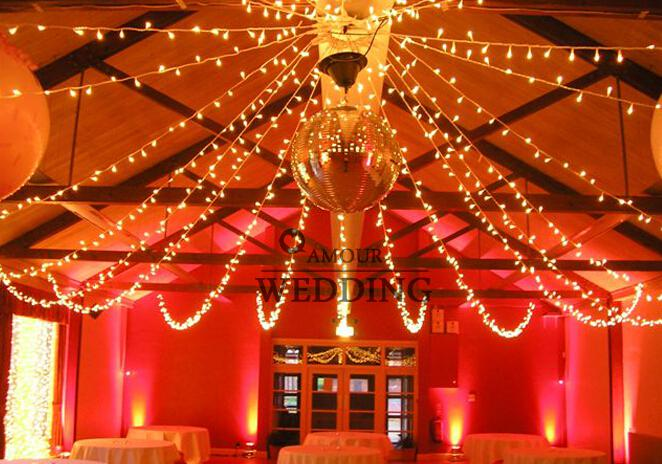 Fashion wedding led lights decorations cold light 300 lights wedding fashion wedding led lights decorations cold light 100 lights wedding room party home and garden decoration photography prop 8 colors 10 meter junglespirit Choice Image