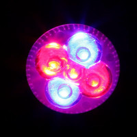 Wholesale Home Growing - E27 15W LED Grow Light Red Blue Hydroponic Growing Plant LED Light Grow Lamp Garden Home Plant Grow Lights Indoor Plant Lighting
