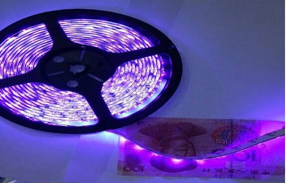 5m 5050 3528 SMD LED-band Ljus Lila / Rosa Singelfärg Vattentät IP65 Icke-Vattentät Flexibel 300 LED-lampor LED-remsor DC 12V Ny ankomst