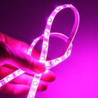 ingrosso striscia principale viola impermeabile-5M 5050 3528 SMD LED Strip Light Purple / Pink Singolo colore Impermeabile IP65 Non-Impermeabile Flessibile 300 LED Strips LED DC 12V Nuovo arrivo