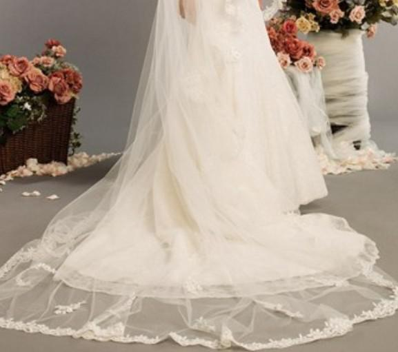 2014 New Arrival Wedding Accessories 2.5 Meters 1 Layer Long Appliques Edge Ivory White Lace Bridal Veils W20140091 Fashion