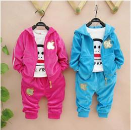 Wholesale Girls Velvet Suit - Wholesale -Spring autumn winter boy girl popular top+pant set 2 pieces children Velvet suit 3 colors