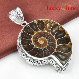 Wholesale Wholesale Ammonite Fossils - Luckyshine 2piece lot Christmas 925sterling silver Simple Design restore ancient ways Ammonite Fossil pendant for lady gift p0501