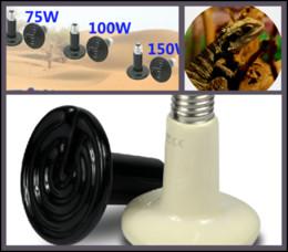 Wholesale Pets Snakes - 100Pcs lot 110v 220v 150W Ceramic Emitter Heated Pet Appliances Reptile Heat Lamp Light P403
