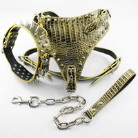 Borsa a tracolla in pelle marrone con cinturino in oro marroneCollarsLeash Set per Mastiff Pitbull
