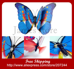 Wholesale Butterfly Wing Pin - Wholesale-New Top Quality 12cm Big Butterfly Vivid Simulation Butterflies With Magnet sucker pin double wings fridge magnet 30pcs lot