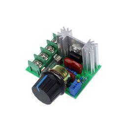Canada Contrôleur de vitesse de moteur électrique de régulateur de tension du SCR AC 2000W 220V cheap electric motor voltage Offre