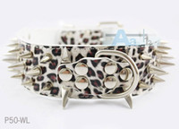 Wholesale Cheap Pitbull Spiked Collars - Wholesale-Colorful Cheap 100% Guarantee Spiked Studded PU Leather Dog Collars PitBull Mastiff White Leopard P50-WL Free shipping