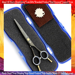 Wholesale Free Hand Cutting - Free shipping Black Color Hair Cutting Scissors Professional Colored Piont Cut Scissor Shear Single Tail