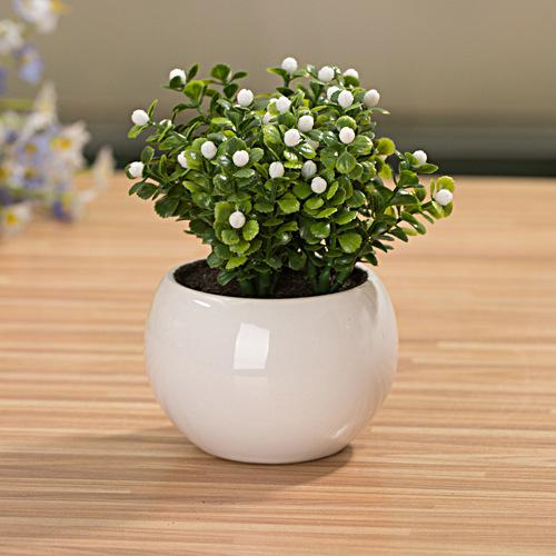 2019 mini small white ball cup flower pot bonsai. Black Bedroom Furniture Sets. Home Design Ideas