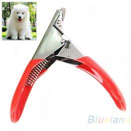 2019 gafas de plástico para perros Cortador de Cortaúñas para mascotas Perros Gatos Pájaros Conejillo de Indias Garras de Animales Producto de Corte Tijera Envío Gratis 00LW