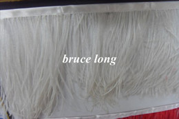 Ostrich Feathers Wedding Dresses Canada - Free shipping white 0strich feathers plumes women dress belt strap ostrich feather trim boa wedding birthday decor 8-10CM