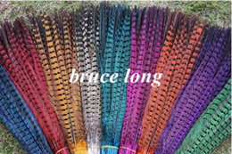 Wholesale Pheasant Feather Rooster - Custom colors pheasant tail feathers rooster feathers jewelry craft hat mask feather hair extention 100pcs approx 20inch 50cm