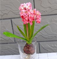 Wholesale Silk Hyacinth Flowers - Wholesale-Flower Pots Planters Real touch flowers Fake Artificial Hyacinth Bouquet Artificial Flowers Home Decoration Silk Flower